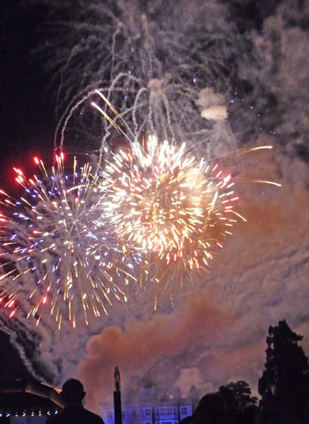 Firework_Display,_Audley_End_House_-_geograph.org.uk_-_1427262