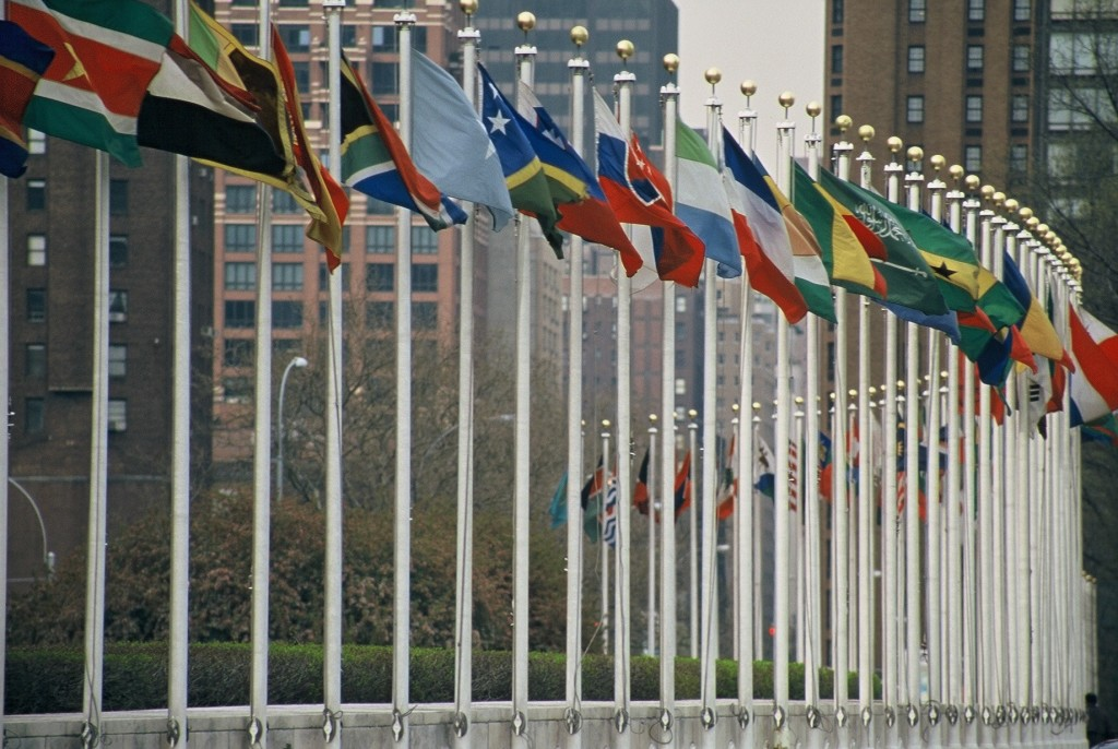 """UN Members Flags"" by I, Aotearoa"