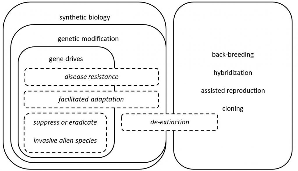 Conservation synthetic biology technologies (solid lines, plain text) and applications (dashed lines, italicized text).